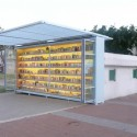 The Garden Library for Refugees and Migrant Workers / Yoav Meiri Architects © R.Kuper