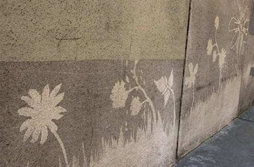 image via www.environmentalgraffiti.com