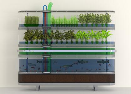 Biosphere Home Farming.