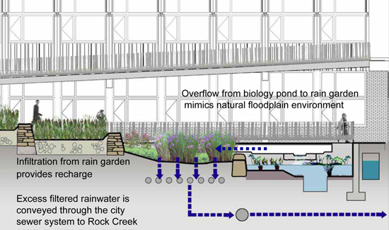 Architecture - Entries from Friday, June 05. 2009 Stormwater Runoff Diagram